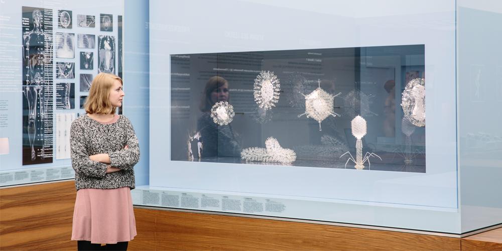 Leben und Sterben im Deutschen Hygienemuseum